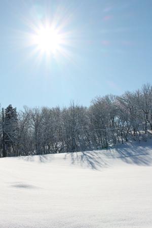 20160216雪景色‐1