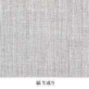 WC-008-001