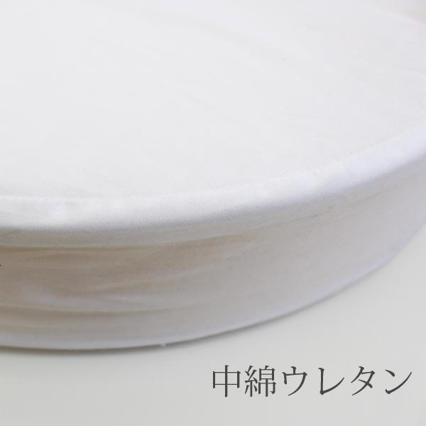 ZN-101-850